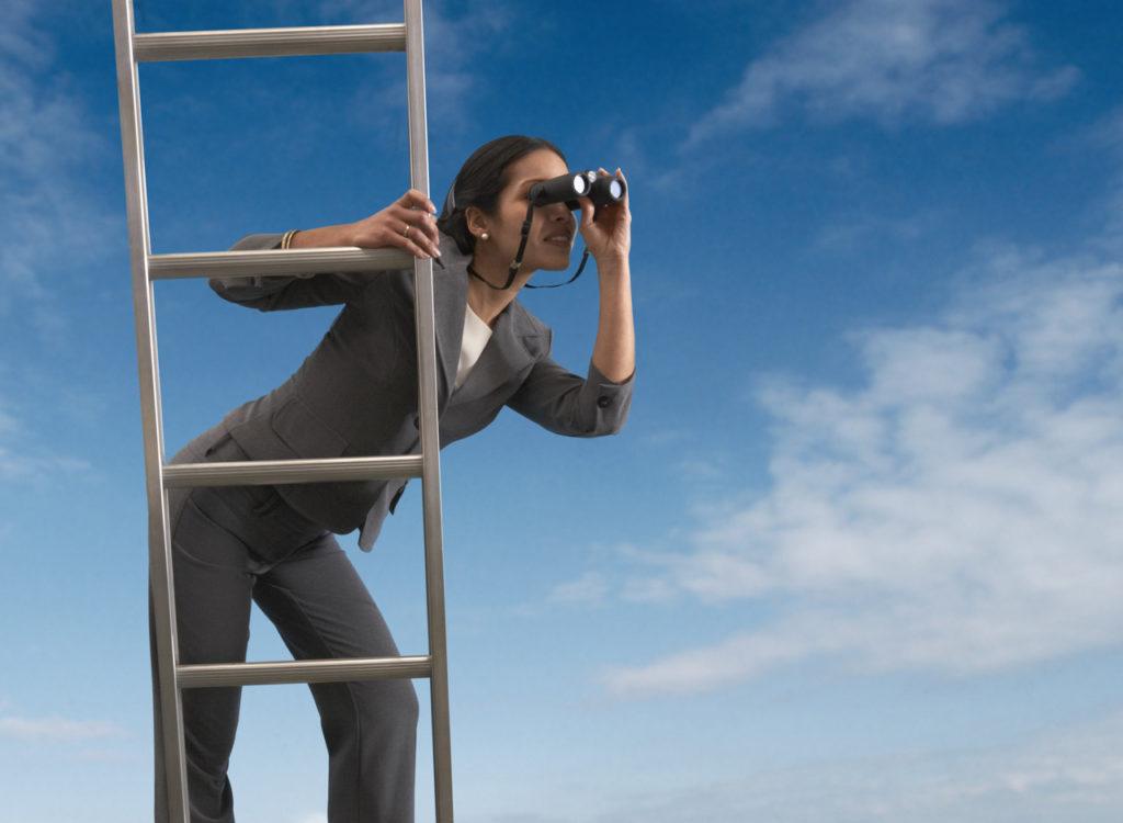 Explore business opportunities